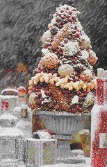 Afbeeldingsresultaat voor vogeltaart maken Squirrel Pictures, Bird Pictures, Animal Pictures, Christmas Crafts, Xmas, Christmas Tree, Bird Bath Fountain, Bird Cakes, Bird Food