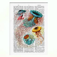 Vintage Dictionary Paper JELLYFISH Dictionary Art by TurtleboneToo