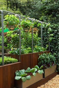 This is idea for a sloping area of the garden where a vegetable garden can be terraced down the slope with structure above for climbers.