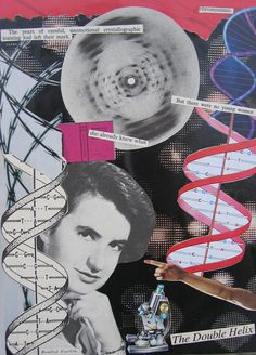 """Rosalind Franklin: """"Science and everyday life cannot and should not be separated."""""""