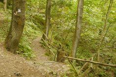Der Weg zum Sängertempel, hoch in den Hessischen Klippen.