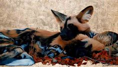 """""""Wild Dogs"""", Oil and Gold Leaf on Canvas, 80cm by 140cm, (2011) by Marc Alexander"""