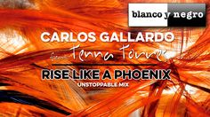 Carlos Gallardo Feat. Tenna Torres - Rise Like a Phoenix (Unstoppable Mi...