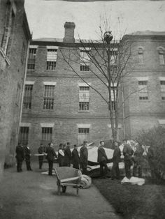 The team at a psychiatric hospital waiting for a patient to climb or jump down from a tree, Colney Hatch Asylum, London - 1895