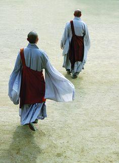 Monjes de Jogyesa - La historia de Jogyesa, el monasterio central de la enseñanza del budismo en Corea, es tan larga como la historia del budismo coreano. A través de sus postulados tradicionales, junto con la práctica constante de las enseñanzas del Buda, la Sangha ordenada por monjes y monjas han sido capaces de continuar su trabajo de ayudar a salvar a todos los seres del sufrimiento.