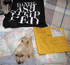 Daniel Ash Stripped t-shirt, envelope with fabulous Bubbleman art, and my reluctant model