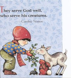 They Serve God Well Who Serve His Creatures Turtle Magnet Mary Engelbreit Art