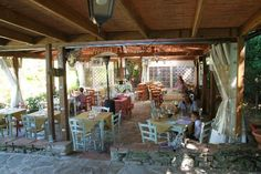 Photos of Antica Trattoria La Sosta Del Papa, Barberino Val d'Elsa - Restaurant Images - TripAdvisor