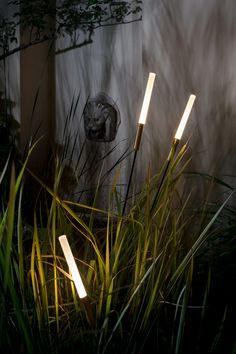 I Maestri del Paesaggio 2017 - Catellani&Smith Outdoor Lighting Landscape, Backyard Lighting, Garden Lighting Ideas, Outdoor Floor Lamps, Outdoor Flooring, Landscape Architecture, Landscape Design, Garden Design, Lampe Ballon
