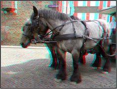 Paardentram Dordrecht 3D