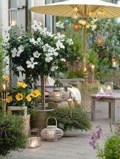 Flowers for the summer garden living, home and garden, terrace garden, gard Garden Living, Garden Cottage, Small Gardens, Outdoor Gardens, Pinterest Garden, Rooftop Garden, Balcony Gardening, Garden Pool, Garden Spaces