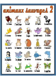 animaux sauvages 2    Dictionnaire Visuel   animau #Animaux #Dictionnaire #sauvages #Visuel French Language Lessons, French Language Learning, French Lessons, English Lessons, Learn French Beginner, French For Beginners, 1st Grade Math Worksheets, French Worksheets, French Teaching Resources