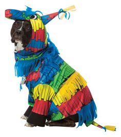 """Buy Rasta Imposta """"Pinata"""" One-piece Hooded Halloween Dog Costume at online store Unique Halloween Costumes, Creative Costumes, Pet Costumes, Halloween Items, Halloween 2017, Halloween Party, Costume Dinosaure, Costume Chien, Costume Prince"""