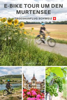 Ausflugstipp Schweiz: Eine Genussreise um den Murtensee mit dem E-Bike. Dazu ein Besuch im zauberhaften Städtchen Murten. Reisen In Europa, Travel Inspiration, German, Deutsch, Bike Rides, North America, German Language