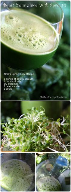 Juicing sprouts: Juice recipe with alfalfa sprouts