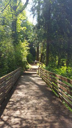 Fennel Creek Trail: