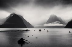 Michael Kenna: Low Tide and Tree Roots, Millford Sound, New Zealand. 2013