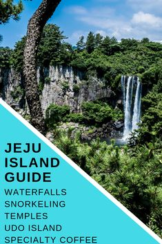 Best Jeju Island guide. Including best waterfalls to see, how to get around Jeju Island, awesome snorkeling spots, specialty coffee