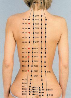akupunkturpunkte blase - Google Search Google