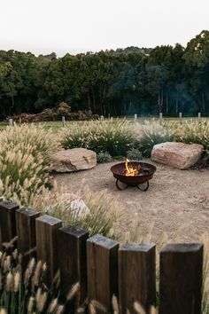 Farmhouse Landscaping, Fence Landscaping, Farmhouse Garden, Veg Garden, Garden Trees, Australian Native Garden, Garden Landscape Design, Fire Pit Backyard, Outdoor Fire