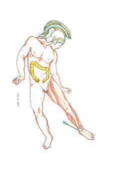 Рисунки к мифу ахиллесова пята