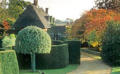Oasis: Danish-born Jorn Langberg's thatched house topiary