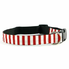 Isabella Cane Holiday Candy Cane Stripe Dog Collar - XS at HSN.com