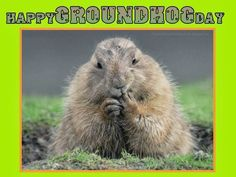 February 2nd is #GroundHogDay!