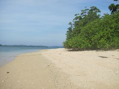 Avis Island | Know Andamans Port Blair, Andaman And Nicobar Islands, Travel Information, Tourism, India, Beach, Water, Places, Outdoor