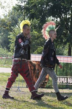 Punks with colourful mohicans