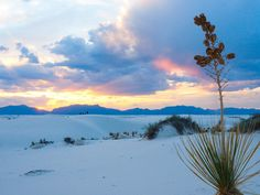 Sunset at White Sands National Monument | trip guide