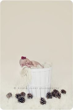 simple precious... yet so, so simple. Need to get a pop of red headband for upcoming shoot and pine cones