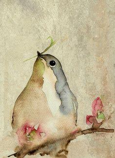 * Watercolor Bird, Watercolor Animals, Watercolour Painting, Painting & Drawing, Watercolours, Watercolor Paintings Tumblr, Spring Art, Summer Art, Little Birds