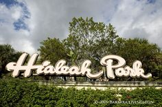 Browse photos of our Casino, Live Racing, Park Expansion, and Events in our Hialeah Park photo gallery. Miami Dade County, Miami Florida, Miami Beach, South Florida, Hialeah Park, Horse Racing Results, Vintage Florida, Park Photos, Arts And Entertainment