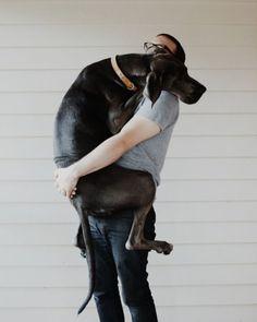 Тяжёлые обнимашки. #собака #dog