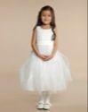 Paul Costelloe Living Lace Bodice Dress