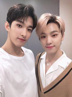 Dk and Dino Dino Seventeen, Seventeen Memes, Seventeen Album, Seventeen Woozi, Jeonghan, Wonwoo, Seungkwan, Hiphop, Day6 Sungjin