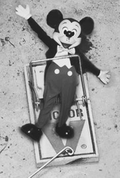 photographer? mouse trap