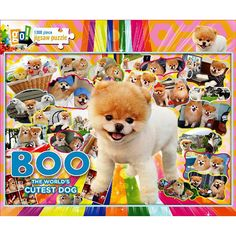 Boo 1000 Piece Puzzle: Boo, the world's cutest dog, has captured the attention of millions of internet viewers. Now he can be yours in this adorable 1000 piece jigsaw puzzle. Boo!  http://www.calendars.com/Assorted-Dogs/Boo-1000-Piece-Puzzle/prod201300020457/?categoryId=cat00188=cat00188