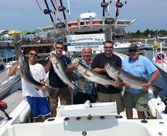 Cape cod fishing charters deep sea fishing for striped for Deep sea fishing bay area