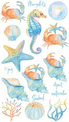 Watercolor Sea, Watercolor Animals, Watercolor Illustration, Watercolor Paintings, Crab Illustration, Watercolor Design, Starfish Drawing, Sea Clipart, Shell Drawing