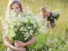 """Summer in Latvia (""""Madara Cosmetics"""") Natural Make Up, Natural Skin Care, Organic Beauty, Natural Beauty, Madara Cosmetics, Beauty News, Wild Flowers, Nature, Photography"""