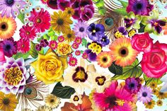 Anallop DissenyFlower print of realistic illustration and drawings of flowers (roses , poppies , lilies , daisies, ibiscus ...) on different colors (pink, yellow, blue, purple...) from our Dolce Vita collection for woman's swimwear and beachwear design. We print lycra fabrics from Barcelona. Discover more in our facebook page: https://www.facebook.com/SwimwearFabricsAnnaLlopDisseny?ref=hl