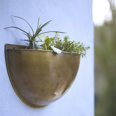 wall planter - Google Search