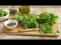 Știai că Leușteanul este mai mult decât o plantă aromată? Uite câte afecțuni poți trata cu el! - YouTube Frozen 2, Parsley, Pesto, Spinach, Herbs, Vegetables, Health, Food, Youtube