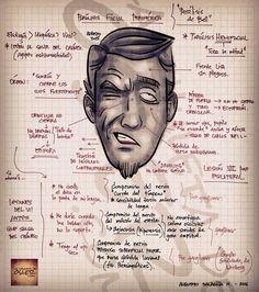 El CMAJ publico en 2014 una nueva guía sobre el manejo de la parálisis facial idiopática, también llamada parálisis de Bell o parálisis a frigore. Esta guía bajo los auspicios del Bell Palsy Worki…