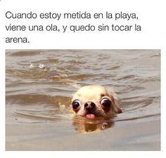 Cuando estoy metida en la playa. #humor #risa #graciosas #chistosas #divertidas