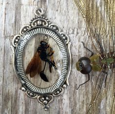 A personal favorite from my Etsy shop https://www.etsy.com/listing/251511345/mud-dauber-wasp-in-resin-antiqued
