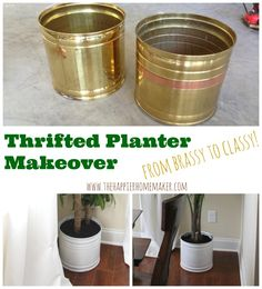 Thrifted Planter Makeover and Why You Need Houseplants!