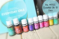 Everyday Oils Kit - Giveaway!